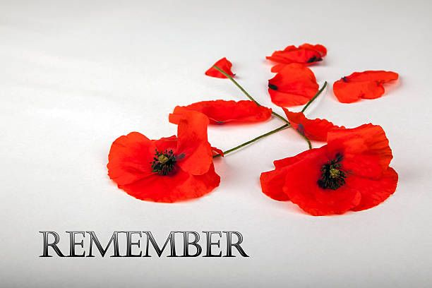 Lest we forget. Please take a moment today to remember those who fought for our beautiful country & our futures. #Canada #RemembranceDay | www.platosclosetnewmarket.com