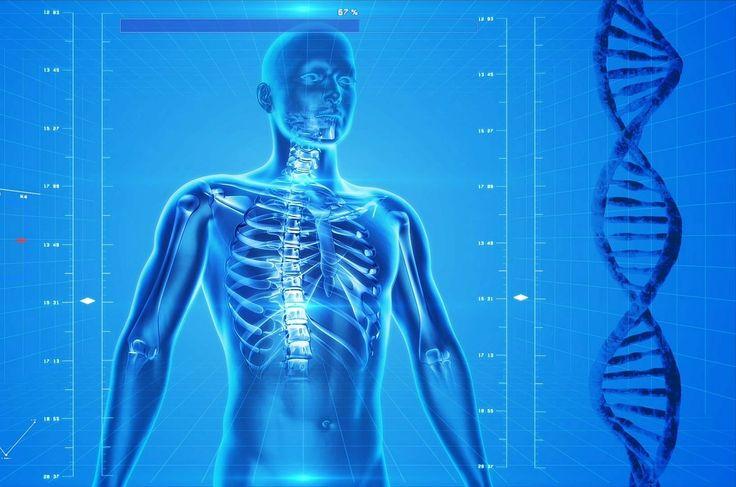 Törékenyebbek a csontjaink / More fragile our #bones Forrás/source: Pixabay