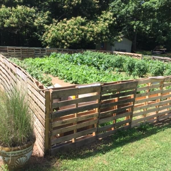 137 best pallet fences images on pinterest pallet ideas for Diy pallet privacy fence