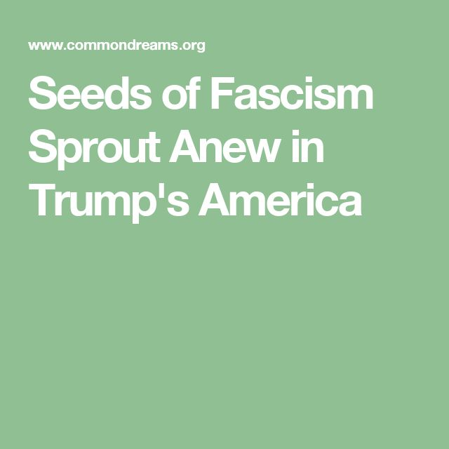"""""""In his 2004 book, The Anatomy of Fascism, Robert O. Paxton wrote that fascism did not die with the end of World War II, that its seeds were planted 'within all democratic countries, not excluding the United States.'""""According to Paxton, fascism was a """"form of political behavior marked by obsessive preoccupation with community decline, humiliation, or victimhood. . . ."""