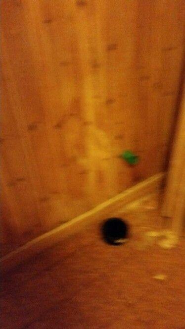 Under toalettet