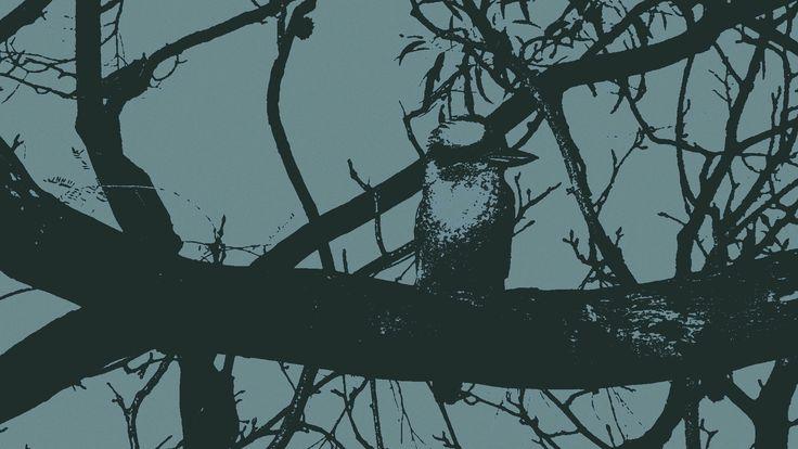 Kookaburra on Branch Dark Blue, Stretched Canvas by Blackbird Art and Design  https://www.etsy.com/au/shop/BlackbirdArtDesign