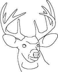 drawing deer line drawings simple easy google patterns lines coloring sambar pattern integrating getdrawings pages