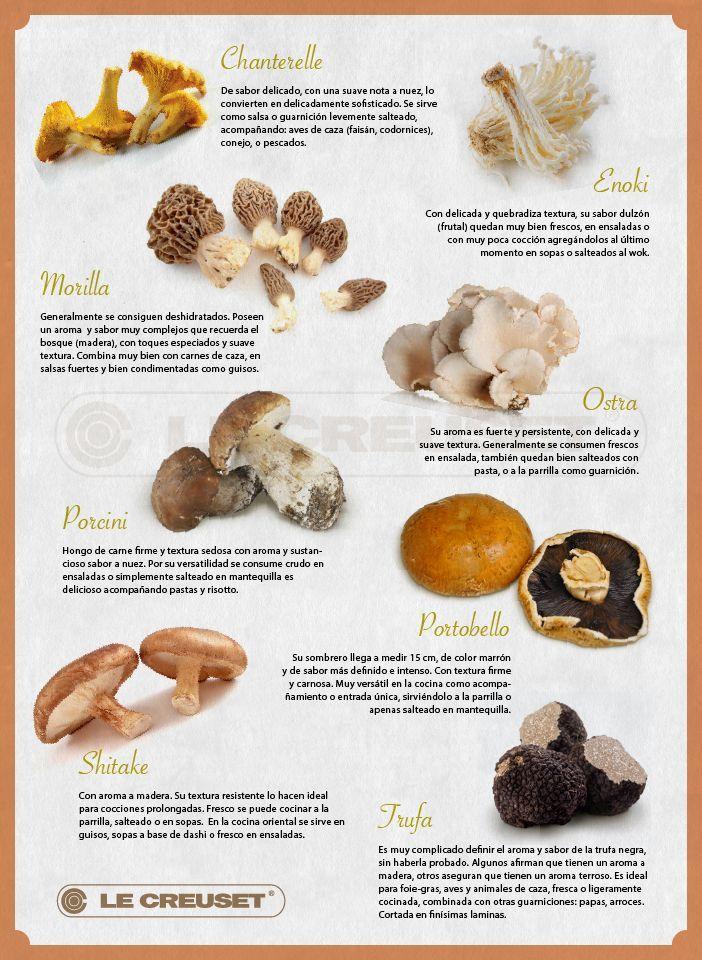 17 mejores im genes sobre un poco de todo sobre cocina en - Tipos de hongos en la pared ...