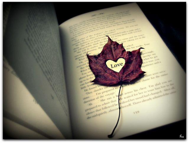 what else.: Bookmarks, Felt, Autumn Leaves, Faith, Posts, Heart Desire, Fall In Love, El Amor, Love Quotes