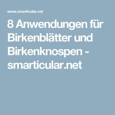8 Anwendungen für Birkenblätter und Birkenknospen - smarticular.net
