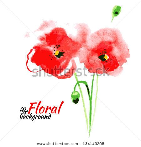 Beautiful Watercolor Paint Red Poppy. Vector Illustration. Cards ...