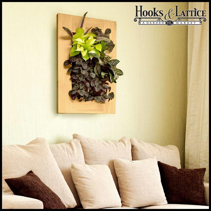 25+ trending Living wall planter ideas on Pinterest | Succulent ...