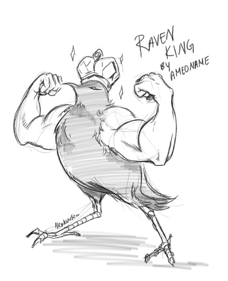 thank you nezkovsou for this accurate depiction of the Raven King! XD