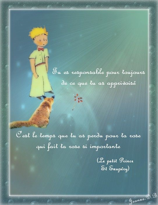 citations du petit prince - Google Search