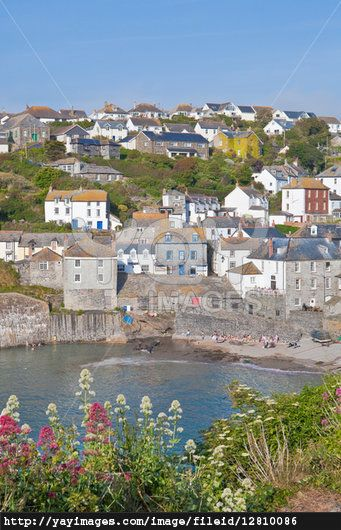 "Port Isaac (Cornish: Porthysek)... small and picturesque fishing village on the coast of Cornwall... Various television shows have been filmed in the village such as  Poldark... Doc Martin... and Rosamunde Pilcher's ""Shell Seekers..."" Village dates from the 18th/19th centuries, when its prosperity was tied to coastal freight & fishing. Fishermen still catch fish,crab & lobsters..."