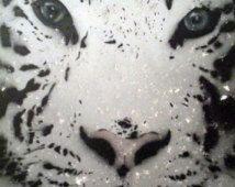 Bulletins d'enneigement tigre 16 x 20