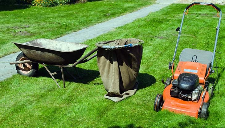 Mowing Wet Grass Here Are The Top 20 Tips To Know Grass No