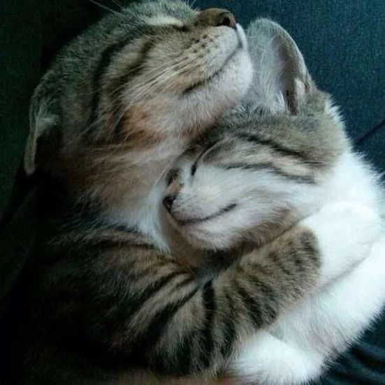 How sweet! Hugs