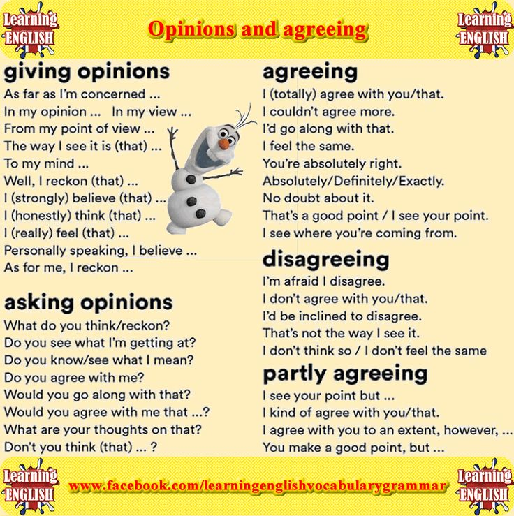 Agreeing and giving opinions