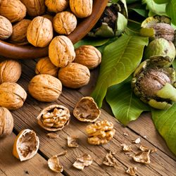 4 Reasons You Should Eat Walnuts - Dr. Weil's Daily Tip