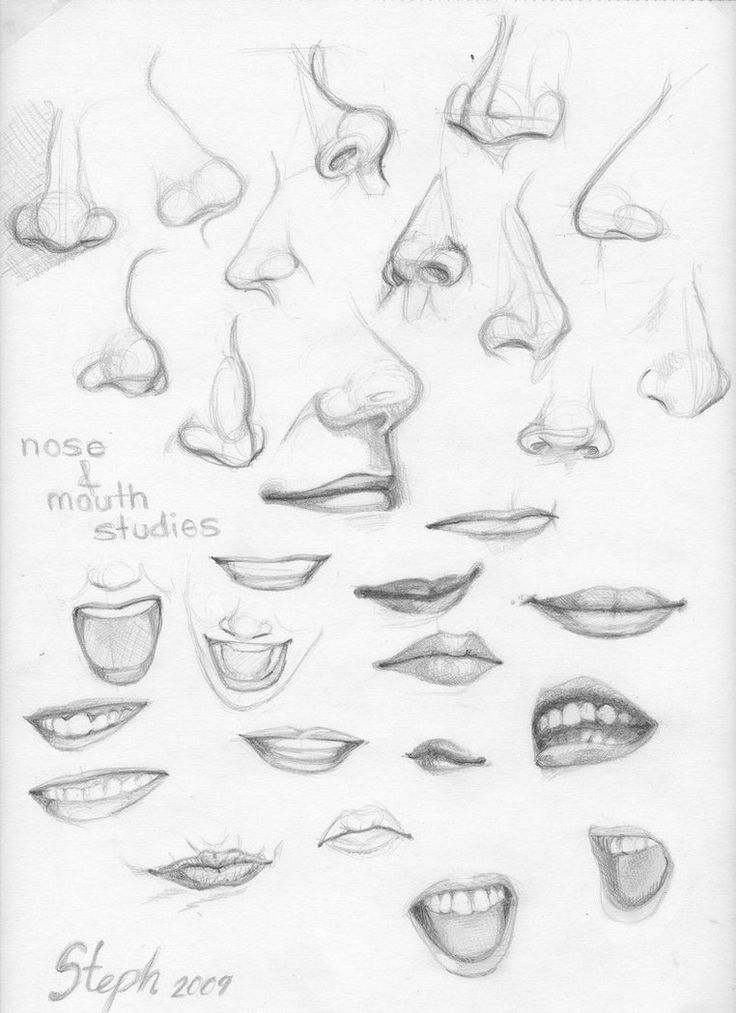 Nose and Mouth studies by ~tigre-lys on deviantART