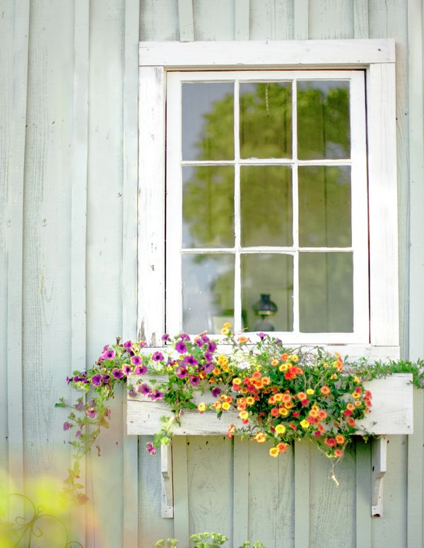 Flowerbox filled with spring blooms