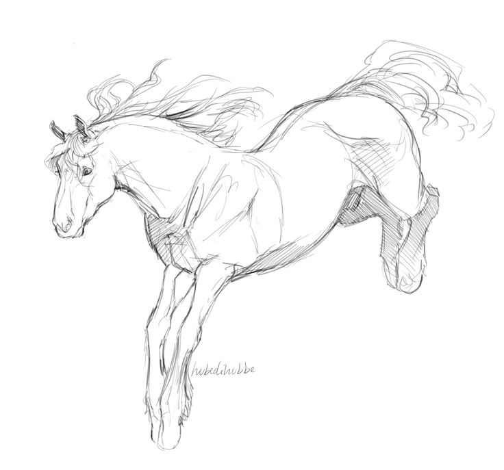 Head a bit odd and front legs seem a bit inaccurate but I LOVE the capturing of the hindquarters