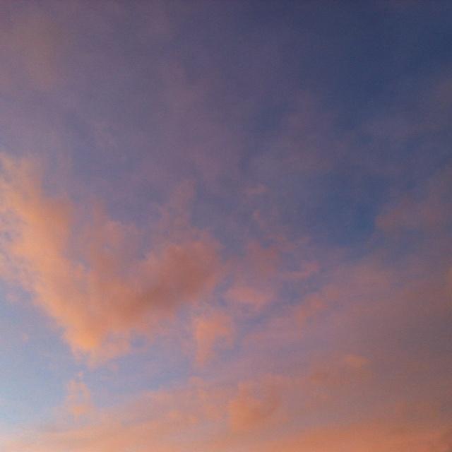 새벽 하늘 & Love