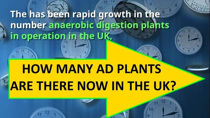How many Anaerobic digestion Plants in the UK