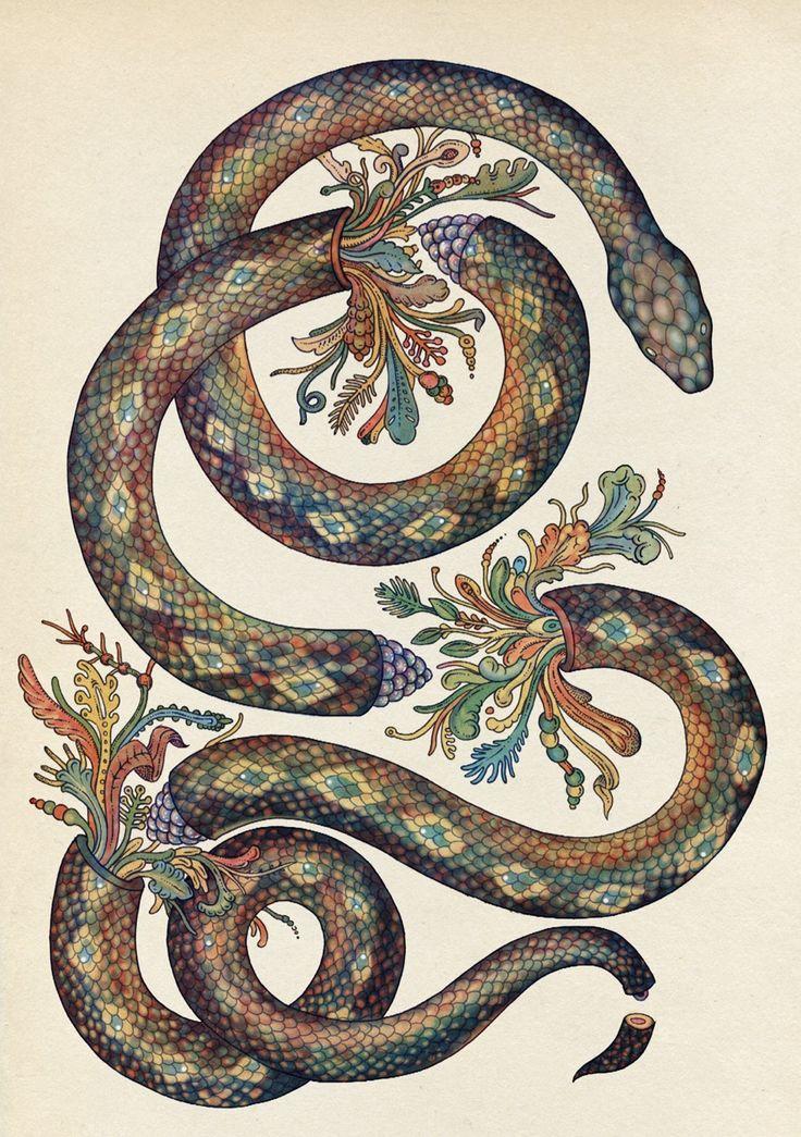 Limited edition Giclee prints of Katie Scott  Snake illustration