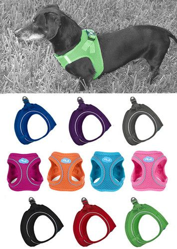 Easy on, step in dachshund dog harnesses, super comfy plush air mesh, no choke design that distributes all the pulling forces over your dachshund's chest and keeps the stresses away from the throat. Comes equipped with Dog Finder ID tag and reflective strips. 5 colors, 4 sizes.