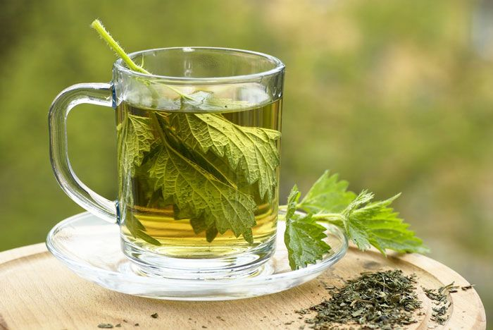 "HORMONE BALANCING TEA - Hair Loss Tea ""NETTLE LEAF"" Ingredients: 1/2 cup leaves to 1 Litre of water. Use as an infusion. Drink 1 Litre per day."