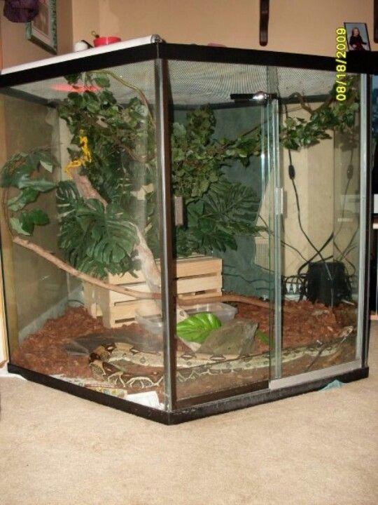 Best Ideas About Creature Enclosures Reptile Enclosures