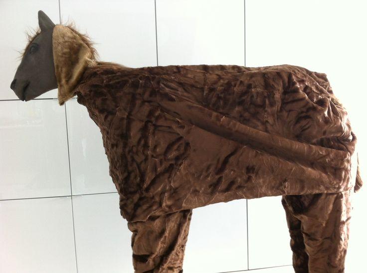 Kostuum paard  2 persoons