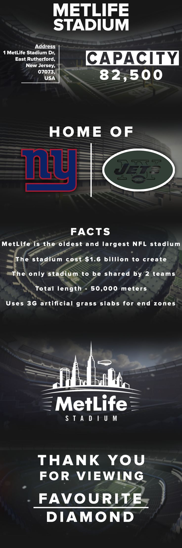 MetLife Stadium [Final project]