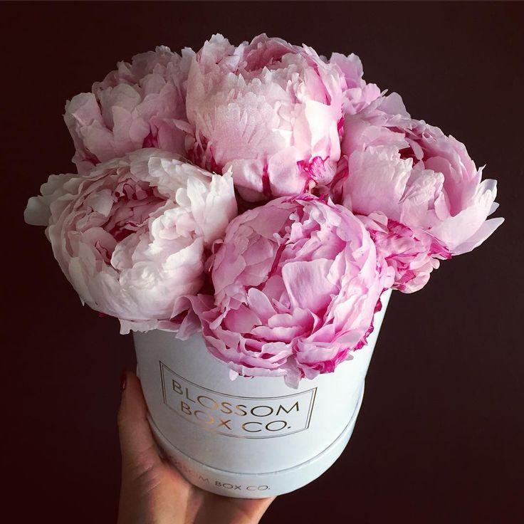 153 Best Unusual Flower Vases Images On Pinterest Floral