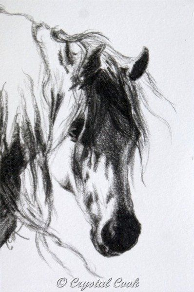 Arabian Horse Art Original Drawing Black and White miniature art OOAK grey. $30.00, via Etsy.
