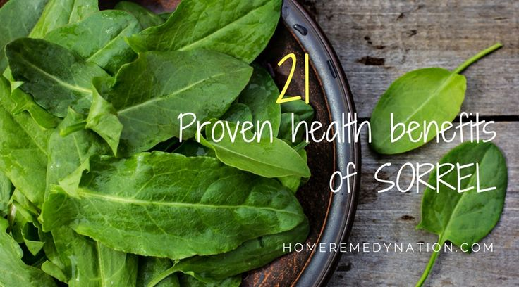 21 Proven Health Benefits Of Sorrel-What is sorrel? Sorrel is a bushy, annual plant from the family of Buckwheat. It grows in a wide variety of temperatures so it can be found in every type of climate, in different parts of the world. It is used to make a famous drink called Karkade. Karkade comes from Egypt and it has …