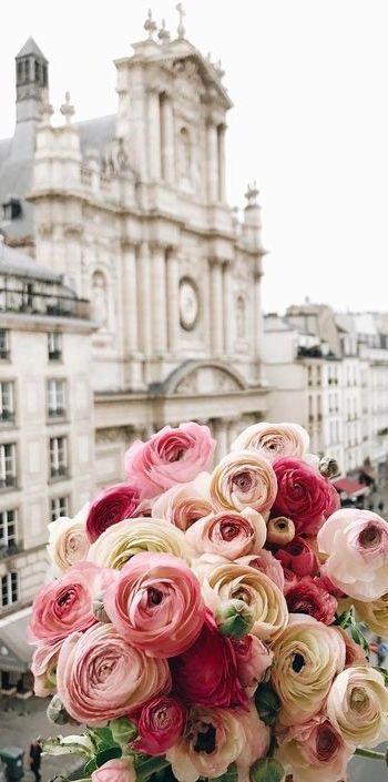 Le printemps fleurit dans les rues de Paris