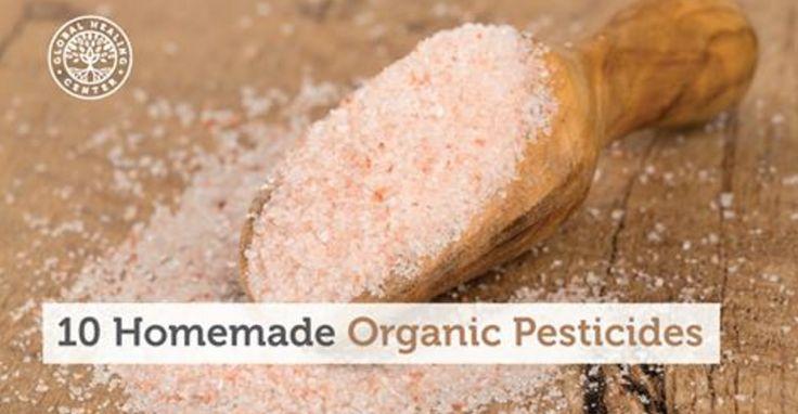 10 Homemade Organic Pesticides to Use in Your Garden | AltHealthWorks.com