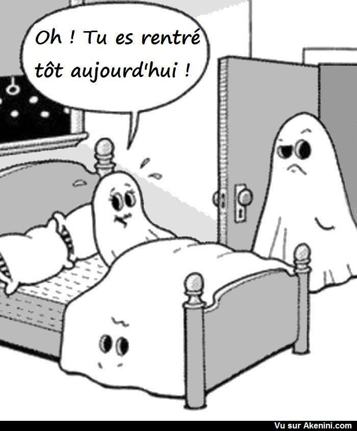 Akenini.com - Cartoons Halloween | Halloween drôle, Humour fantôme, Image humour