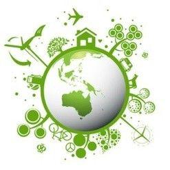 10 Realidades sobre las Bolsas Biodegradables y Compostables