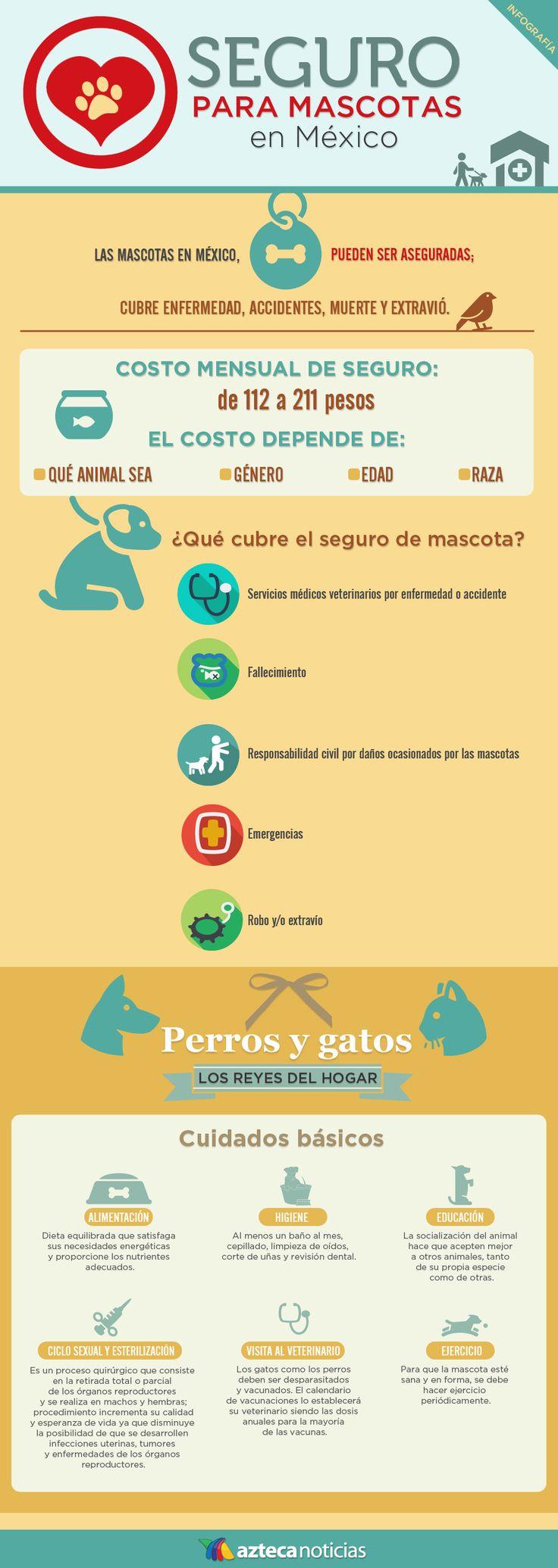 Seguro para mascotas en México