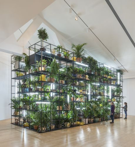 Rashid Johnson: Hail We Now Sing Joy | Kemper Museum of Contemporary Art