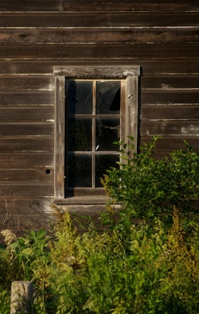 Pin by Connie Batten on doors and windows Through the