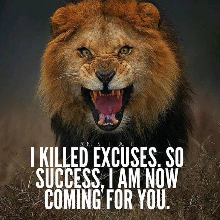 Time for motivational quotes by ecstatic_entrepreneurs Who else is out here killing excuses? So you know it's a must in order to get success. How will you start? Comment below! #entrepreneurs #entrepreneur #business #businessman #businesswoman #bossbabe #bosslady #success #successful #motivation #motivationalquotes #motivational #boss #inspiration #inspirational #millionaire #inspirationalquotes #inspire #bosslife #miamirealestate #hustle #passion #fitness #money #luxury #goals #hardwork…