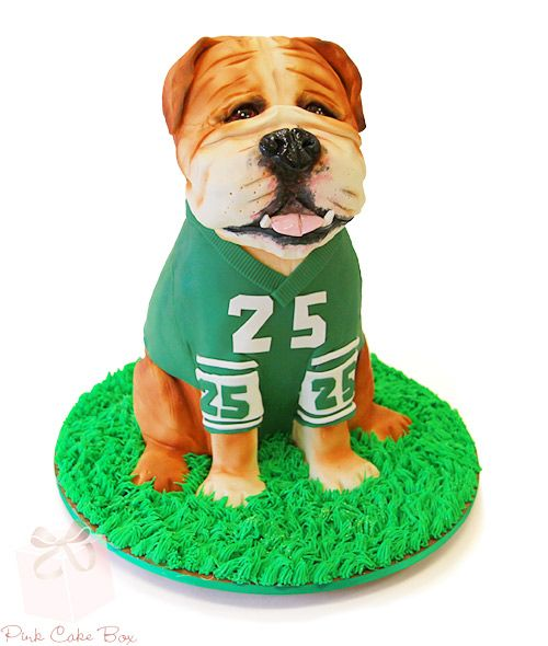 Sporty Bulldog Groom's cake by Pink Cake Box