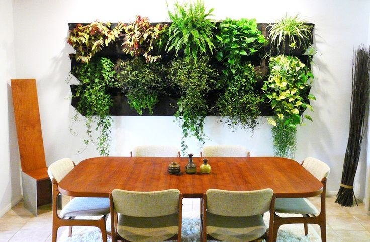 best 25 living wall planter ideas on pinterest vertical garden wall succulents and succulent. Black Bedroom Furniture Sets. Home Design Ideas