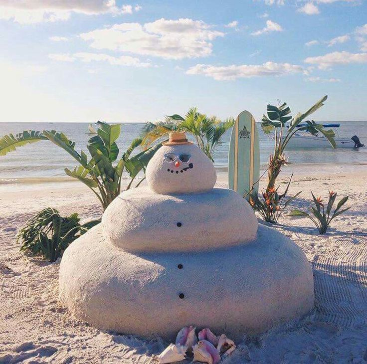 Pin by Cynthia Gore on Tropical Christmas Florida