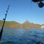 Fishing San Carlos Sonora Mexico. From What's Up San Carlos Newsletter October 10 - 18 2012.
