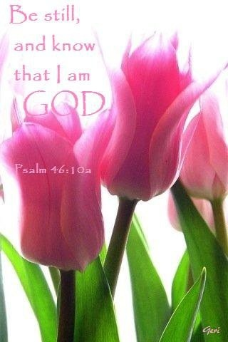 1000 Images About Be Still And Know That I Am God On