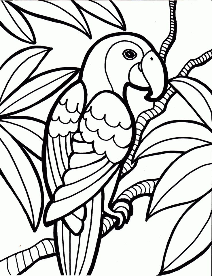 hokie bird coloring pages - photo#22