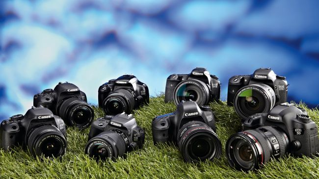 Canon Cameras: which one is right for you?