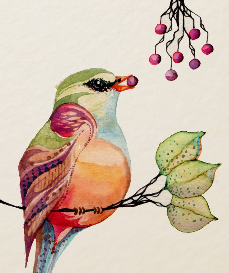 breakfast: Birds Art, Trixie Treats, Colleen Parker, Red Berries, Watercolor Paintings, Watercolor Inspiration, Art Birds, Artists Colleen, Birds Watercolor